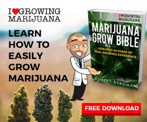 Free E-Book 'How To Grow Marijuana'